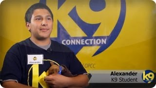 Building Young Lives, One Dog at a Time | k9 connection