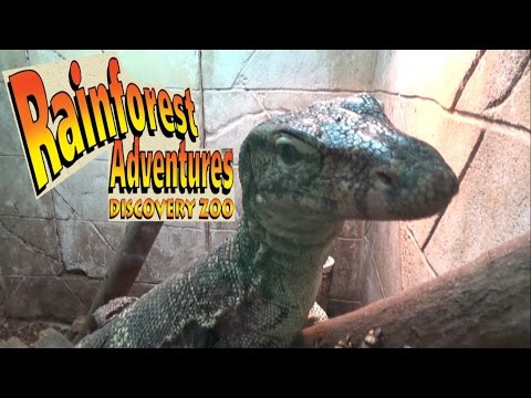 Rainforest Adventures Discovery Zoo in Sevierville (Pigeon Forge) Tennessee Tour & Review