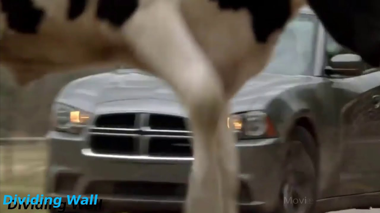 Download Under the Dome 2013 | Invisible wall dropping Scene Full HD