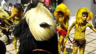 Video umaria moharram tiger dance upload by mohammad junaid shah download MP3, 3GP, MP4, WEBM, AVI, FLV Oktober 2018