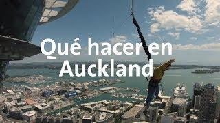 Me aventé de la torre más alta de Nueva Zelanda | Nueva Zelanda #2 Alan por el mundo