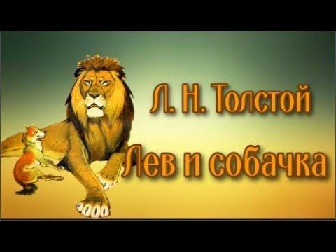 Л. Н. Толстой Лев и собачка - YouTube