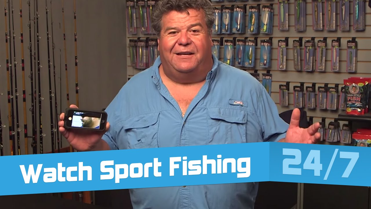 Watch Sport Fishing 24 7 On Any Device With Dan Hernandez