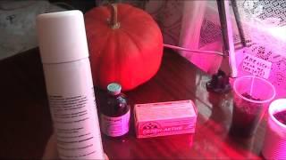 видео ветеринарные препараты