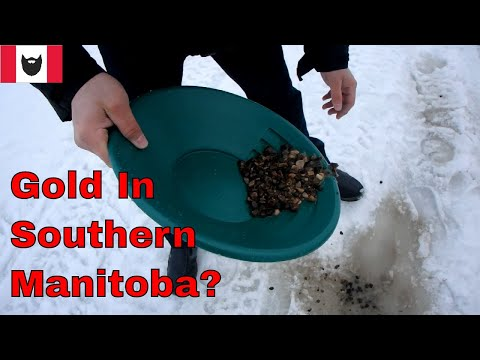 Looking For Gold In Manitoba