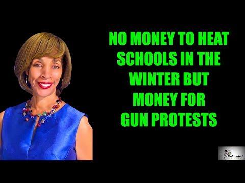 Democrat Baltimore mayor pays for gun protest