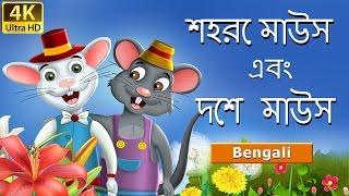 শহরে মাউস এবং দেশ মাউস | Town Mouse and Country Mouse in Bengali | Bengali Fairy Tales