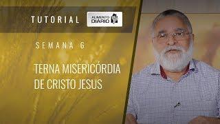 Alimento Diário O evangelho de Deus - Semana 06 - Filipenses (2) - Terna misericórdia de C. J.