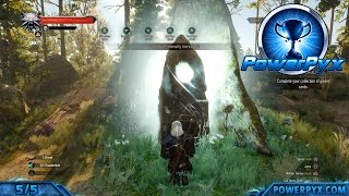The Witcher 3 Wild Hunt - All Places of Power Bonuses (Power Overwhelming Trophy / Achievement)