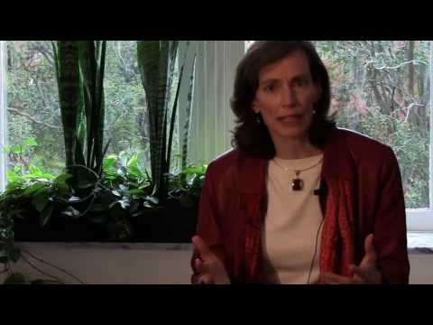 Dr. Shelagh Gallagher on Palmetto Scholars Academy's gifted and talented curriculum