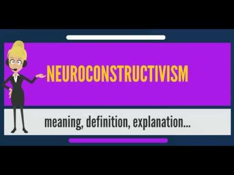 What is NEUROCONSTRUCTIVISM? What does NEUROCONSTRUCTIVISM mean? NEUROCONSTRUCTIVISM meaning
