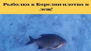 Весенняя рыбалка с друзьями в Карелии/ закрытие сезона зимней рыбалки 2019/лещ на зимнюю удочку!