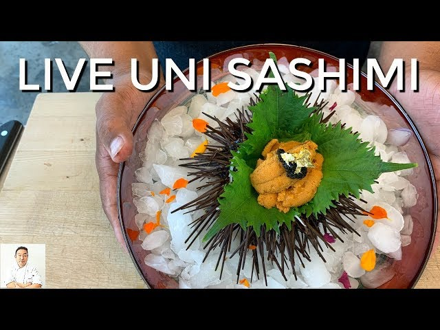 LIVE MOVING Fresh Uni!   Simple Elegant Sashimi