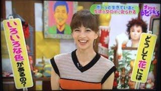 安田美沙子@チコちゃんに叱られる はんなりさん あっかんべぇ〜