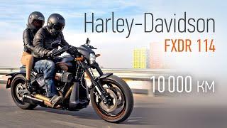 Hasta la vista. Harley-Davidson FXDR 114 после 10000 километров в Авторевю