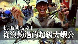 【蝦場傳說#1】傳說中的超級大公蝦?! | 達樂釣蝦場 | 2019/04/27