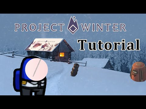 To The Point: How to play &39;Project Winter&39;