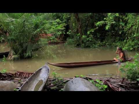 Mentawai Photographic Adventure 2012 HD) mov