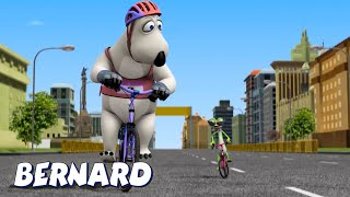 Download Bernard Bear | Cycling AND MORE | Cartoons for Children | Full Episodes