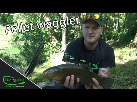 Pellet Wagglern & Method Feedern mit Weltmeister Felix Scheuermann | Fishing-King.de