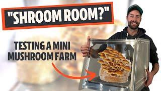 """This Mushroom """"Mini Farm"""" Makes Growing SO Easy"""
