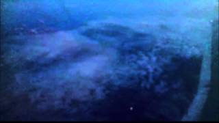 Ant Mas - Tiny Heart (Flyleaf Cover)