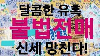 불법전매의 진실(KARA 주간브리핑 29회)