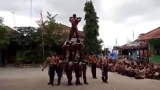 Yel yel step dance Regu Garuda Pramuka Jawa Kampao