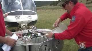 Helicopter Fish Stocking--Bighorn Mountains