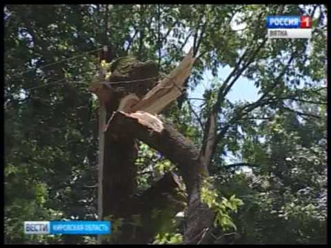 В Кирове и области устраняют последствия вчерашнего урагана(ГТРК Вятка)