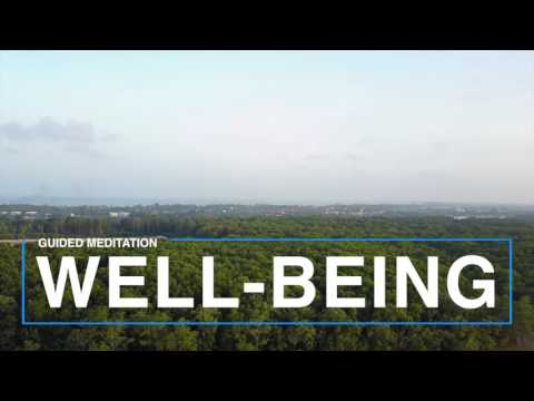 Well-Being - Guided meditation
