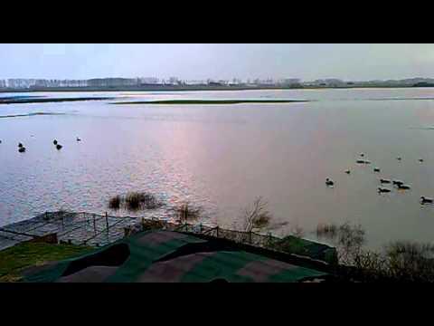 inondation hutte steene  mars 2012