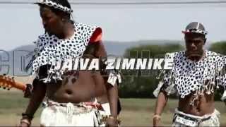 JAIVA ZIMNIKE 2015 Album