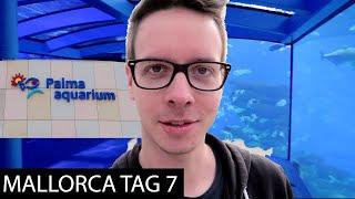 Unterwegs im Dschungel | Palma Aquarium, Festival Outlet, Pasta Pasta | 🌴 Mallorca 2017 (Tag 7)  🌴