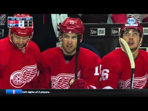 22.01.2016 Detroit Red Wings vs Buffalo Sabres