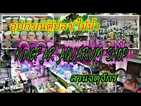 ร้านอุปกรณ์ตู้ปลาตู้ไม้น้ำสวนจตุจักร KINGFAR AQUARIUM SHOP