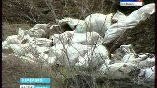 Кто ответит за беспорядок  в районе кемеровского кладбища?