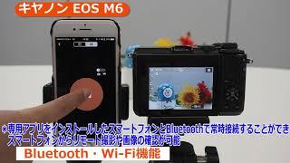 キヤノン EOS M6 ミラーレス一眼(カメラのキタムラ動画_Canon)