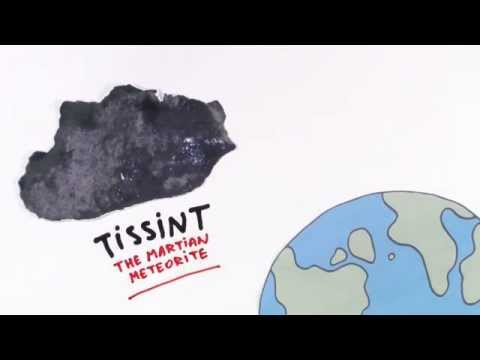 Tissint meteorite shows signs of past biological activity on Mars - the cartoon