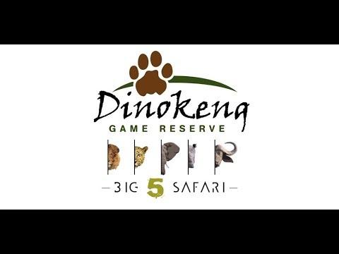 Dinokeng Game Reserve Pretoria - Safari 2018✔