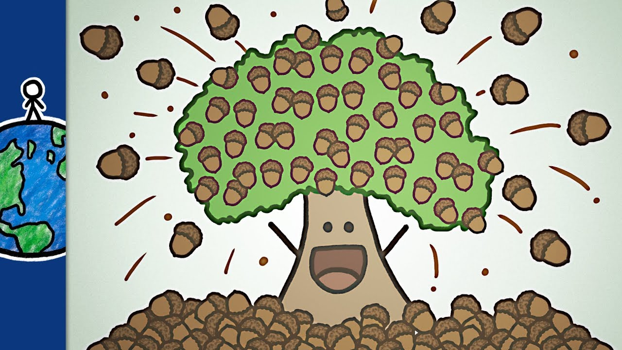 when-trees-go-nuts