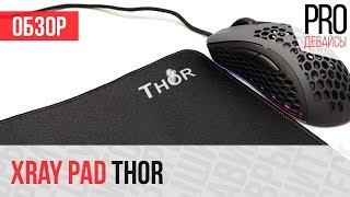 Обзор ковра XrayPad Thor. Зачетно!