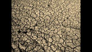 """بالفيديو.. أراضى كفر الشيخ """" عطشانة """".. والفلاحون: نروي بمياه الصرف"""