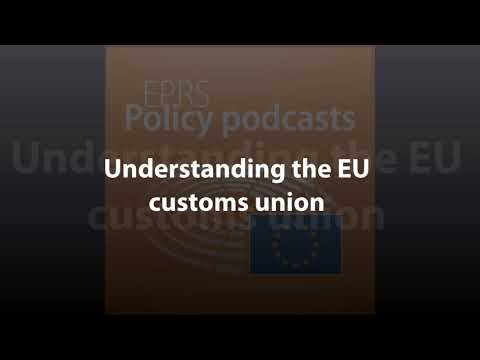 Understanding the EU customs union [Policy Podcast]