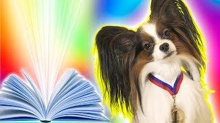 Юки против Гиннесса! Самый умный пес! Сериалити от ЮКИ 1 серия