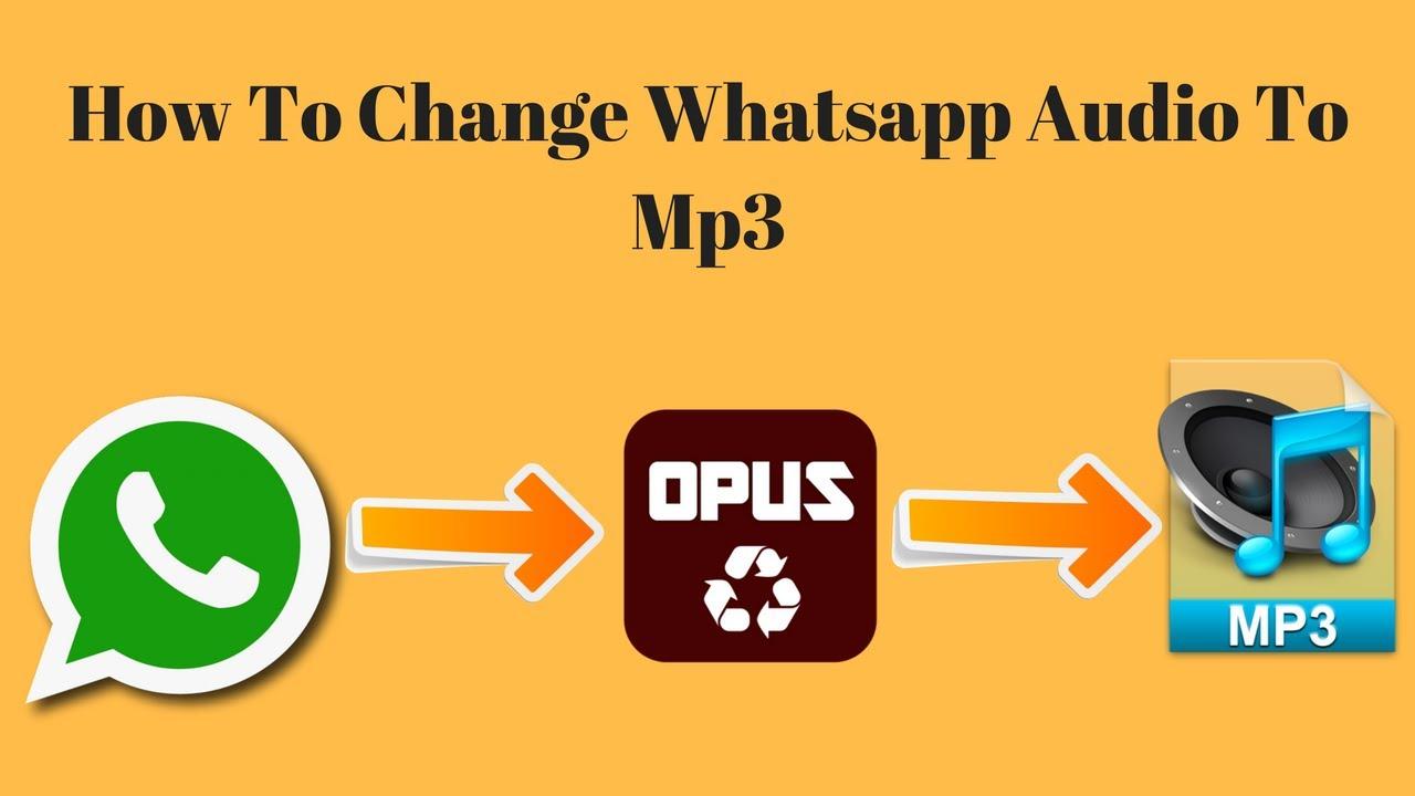 Whatsapp Ton Mp3