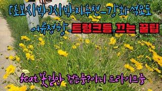 [초보차박]차박지추천_…
