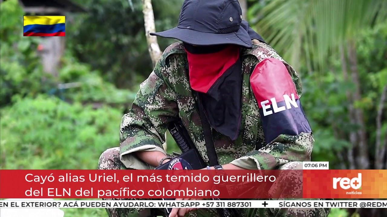 Download Red+ | Cayó alias Uriel, el más temido guerrillero del ELN del pacífico colombiano