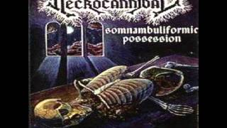necrocannibal - revel in flesh