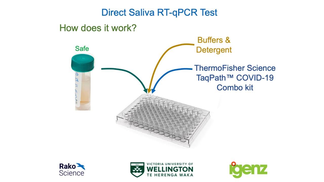 SARS-CoV-2 RT-qPCR explained